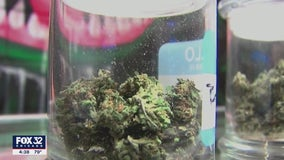 Chicago community group receives nearly $2M from cannabis tax revenue