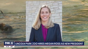 Lincoln Park Zoo hires first woman CEO