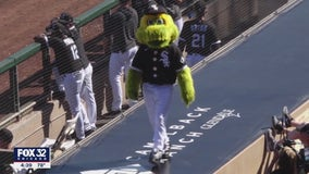 Chicago White Sox mascot Southpaw nominated for Hall of Fame