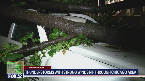 Damage reported across Chicago following heavy winds, rain