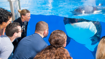 SeaWorld provides online learning resources for students, teachers, and parents during COVID-19 outbreak