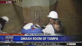 David Does It: Smash room of Tampa