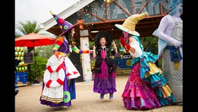 SeaWorld Orlando's Halloween Spooktacular kicks off Sept. 19