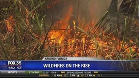 Wildfires on the rise