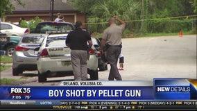 Boy shot in head with pellet gun