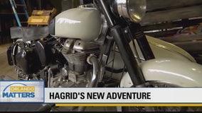 Hagrid's New Adventure