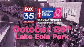 Making Strides Against Breast Cancer 2019