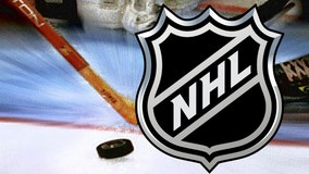 Salary cap economics squeezing out NHL's middle class