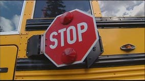 Boy hit by car after driver ignores school bus stop sign and lights