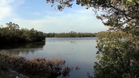 Florida water management district backs Everglades deal