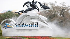 SeaWorld Orlando is giving free admission to children 5 and under