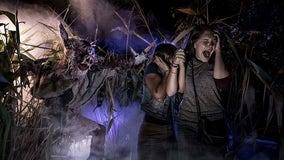 Halloween Horror Nights canceled at Universal Orlando due to coronavirus pandemic