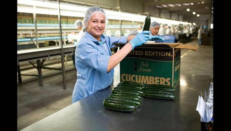 030b16aa-cucumber recall