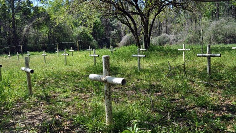 Dozier School crosses 2_1471635437280-401385.jpg