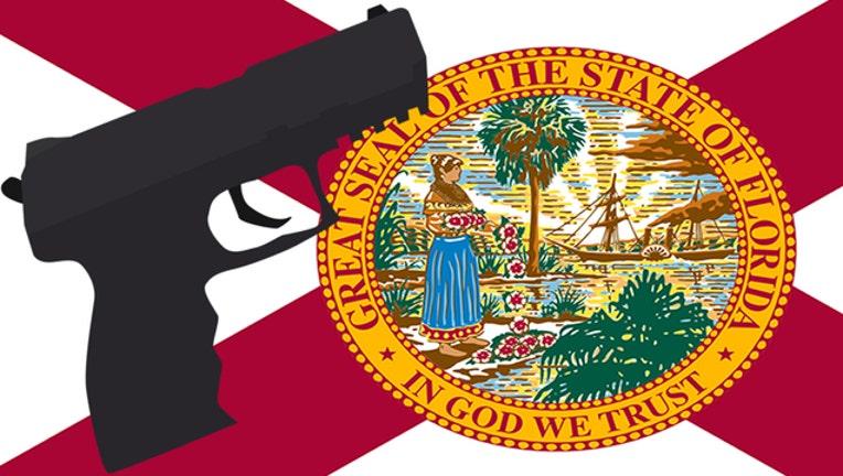 2556e490-FL gun_1495543850063-401385.jpg