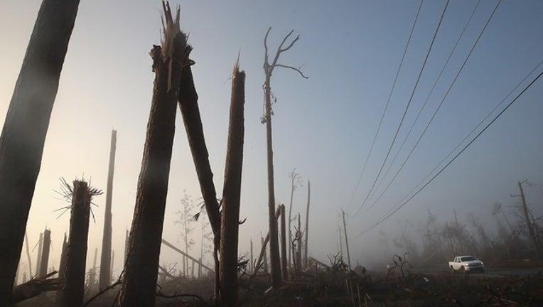 d1a00d29-GETTY_hurricane michael trees_120918_1544371813697.png.jpg