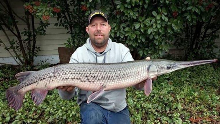 7fc8fca3-Giant-Fish (1)_1549376950035.jpg-401720.jpg