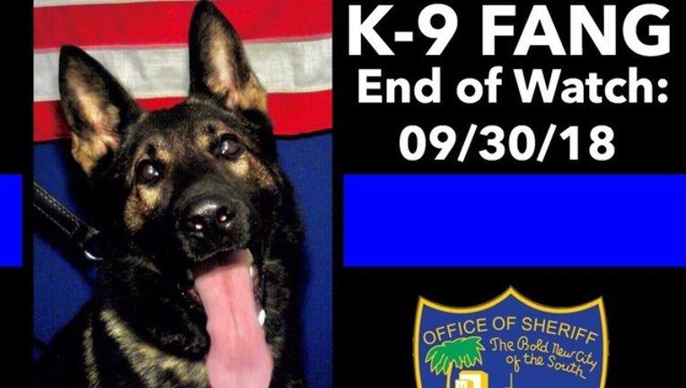 K9 killed jacksonville_JSO photo-401385.jpg