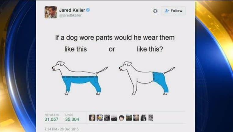 226fc36d-Dog_Pants_Debate-401720.jpg