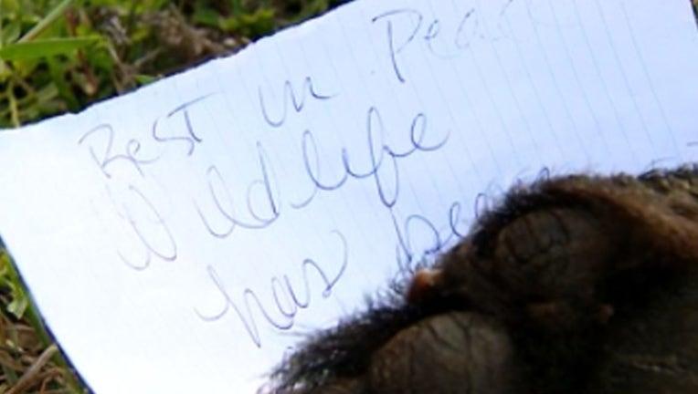 84301a14-WOFL_bear rest in peace_112818_1543427157042.png.jpg