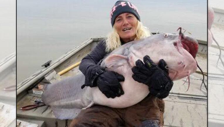 41062931-big catfish_1546515935938.jpg-401385.jpg