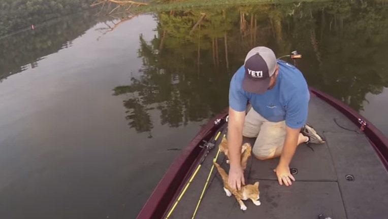 1e758b76-catfishing-65880.jpg