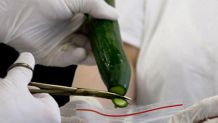 96f32643-Cucumber Testing