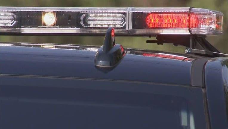 wjbk-generic police lights-082818-65880