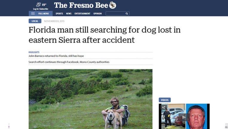 1c1d713f-missing-dog-fresno_1447130484799.jpg