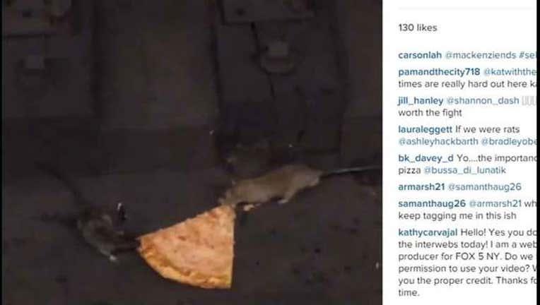 e05dc2fa-Pizza Rat Part 2-402970