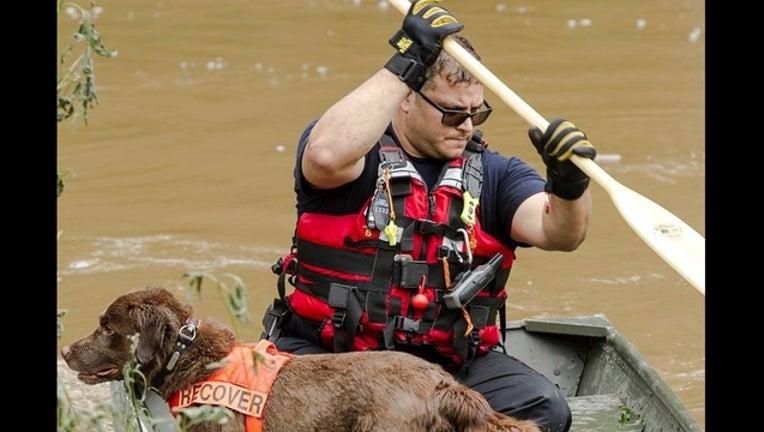 932cafb7-rescue_1504649929779-408795.jpg