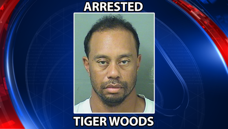 f177ff53-tiger woods arrested_1496073116282.png