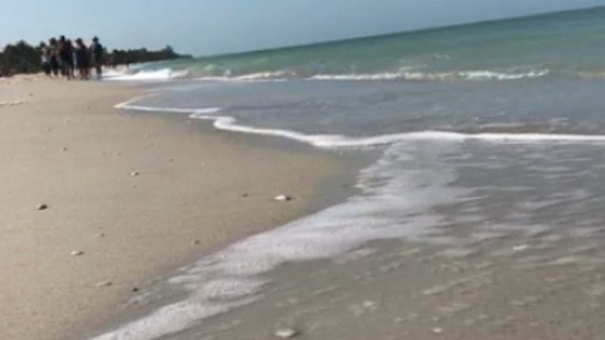 Red tide bloom makes its way to southwest Florida bays