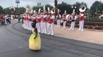 'Just living my moment': Girl, 8, dressed as Princess Tiana dances with Disney band in viral video
