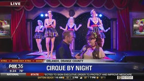 David Does It: Cirque by Night
