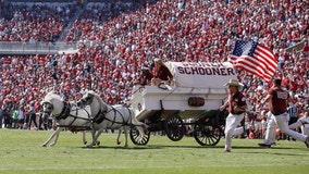 OU's Sooner Schooner crashes on field during game vs. West Virginia