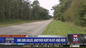 Authorities search for driver in Alachua County hit and run