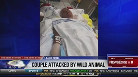 Couple injured in possible bobcat attack in South Florida