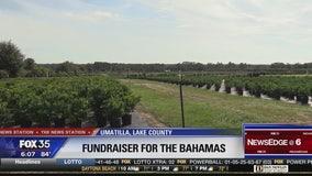 Nursery to hold fundraiser for Bahamas Dorian recovery