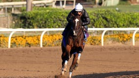 Troubled Santa Anita sees 36th racehorse death, second of weekend