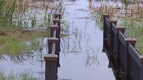 Gotha homeowners take flooding problem to Orange County commissioners