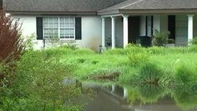 Nestor brings unwanted rain to flooded Gotha