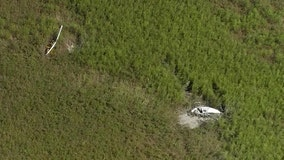 Pilots survive after two helicopters crash into rural Polk swamp