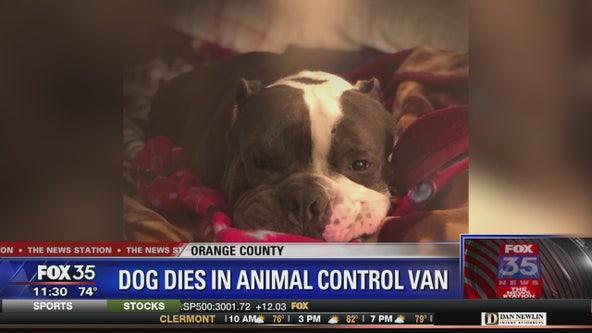Dog dies while in Animal Control van