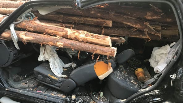 Driver miraculously survives after his vehicle is impaled by logs from truck