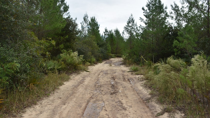Human remains found in Ocala National Forest