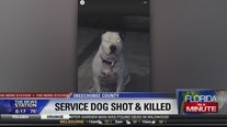 Service dog shot and killed