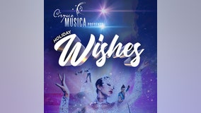 Cirque Musica 12/17 at Amway Center