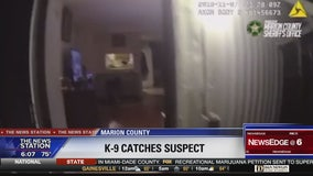 Suspect caught cowering in closet apprehended by K-9
