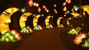 Central Florida Zoo lights up with 'Asian Lantern Festival: Into the Wild'
